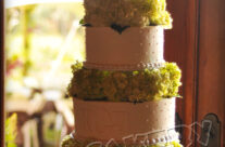 Tall Cake with Columns