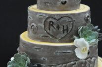 Love this rustic cake!